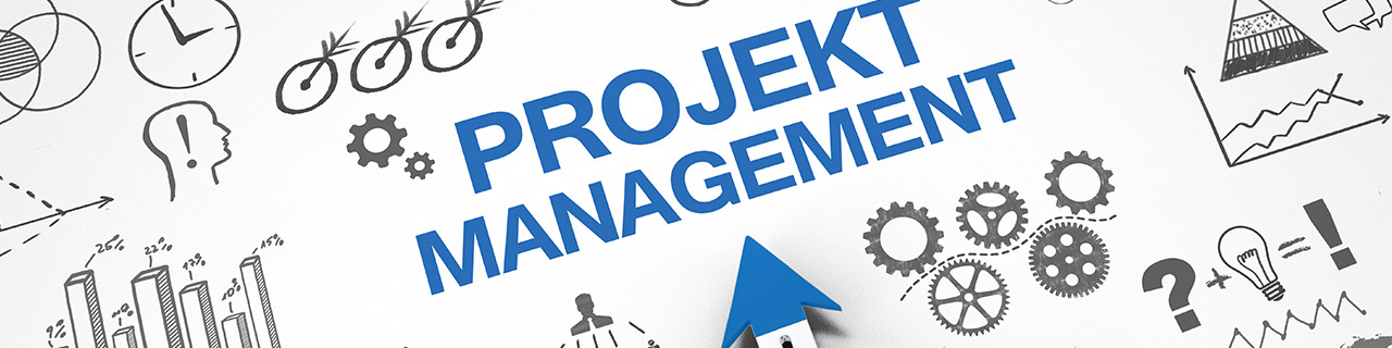 IT Projektmanagement