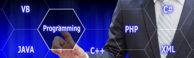 Webprogrammierung-Softwareentwicklung